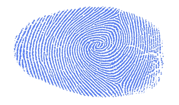 Fingerprint Ford